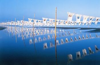 砂浜美術館風景.jpg